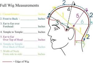 full wig measurements