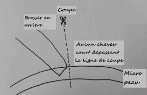coupe-v-loop-02_test